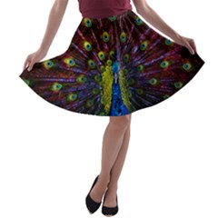Beautiful Peacock Feather A-line Skater Skirt