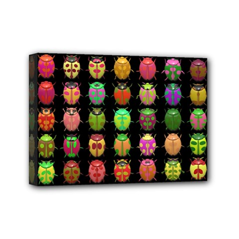 Beetles Insects Bugs Mini Canvas 7  x 5