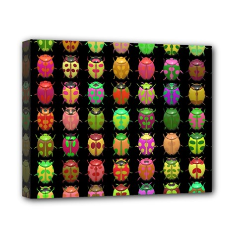Beetles Insects Bugs Canvas 10  x 8