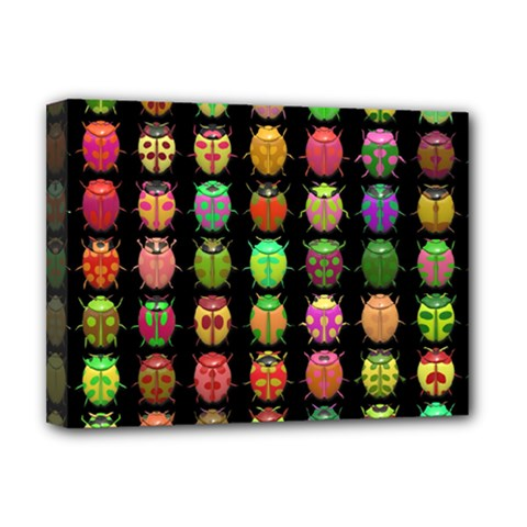 Beetles Insects Bugs Deluxe Canvas 16  x 12