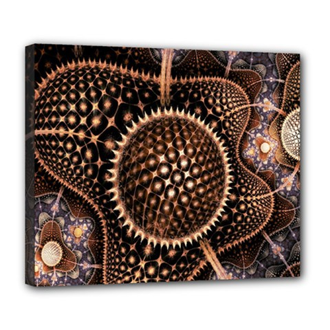 Brown Fractal Balls And Circles Deluxe Canvas 24  x 20