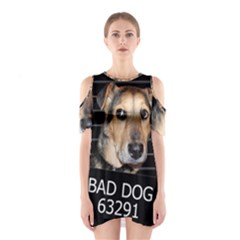 Bed dog Shoulder Cutout One Piece
