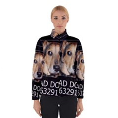 Bed dog Winterwear