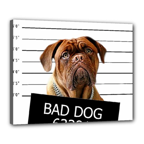 Bad dog Canvas 20  x 16