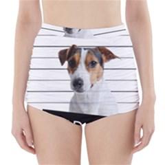 Bad dog High-Waisted Bikini Bottoms