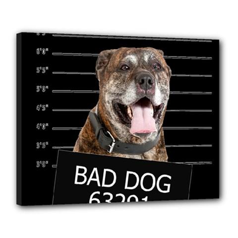 Bad dog Canvas 20  x 16