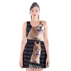 Bad dog Scoop Neck Skater Dress