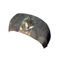 Awesome Wolf In The Night Yoga Headband