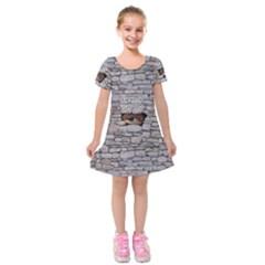 Break Walls Kids  Short Sleeve Velvet Dress