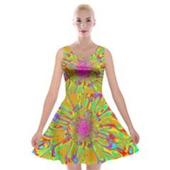 Magic Ripples Flower Power Mandala Neon Colored Velvet Skater Dress