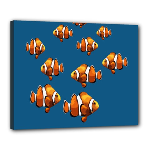 Clown fish Canvas 20  x 16