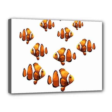 Clown fish Canvas 16  x 12