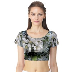 Pure And Simple Short Sleeve Crop Top (tight Fit)