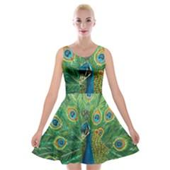 Royalty Velvet Skater Dress