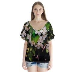 Tree Blossoms Flutter Sleeve Top