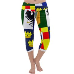 Arms of Four Provinces of Ireland  Capri Yoga Leggings