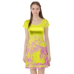 Colors Short Sleeve Skater Dress