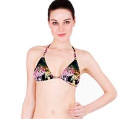 Colors Bikini Top