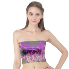 Colors Tube Top