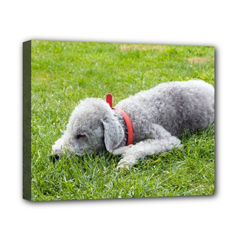 Bedlington Terrier Sleeping Canvas 10  x 8