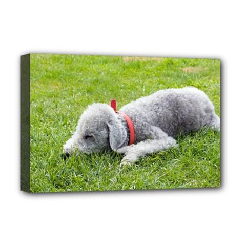 Bedlington Terrier Sleeping Deluxe Canvas 18  x 12