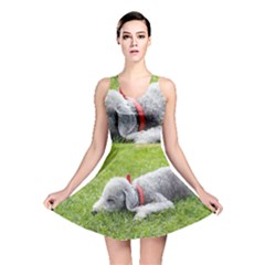 Bedlington Terrier Sleeping Reversible Skater Dress