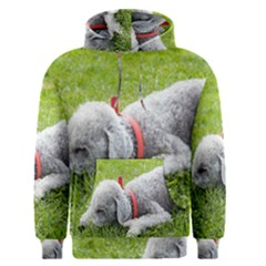 Bedlington Terrier Sleeping Men s Pullover Hoodie