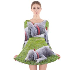 Bedlington Terrier Sleeping Long Sleeve Velvet Skater Dress