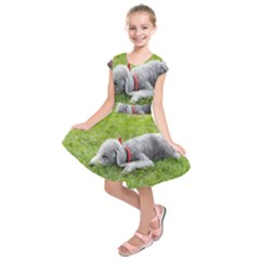 Bedlington Terrier Sleeping Kids  Short Sleeve Dress