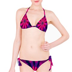 Flower Red Pink Purple Star Sunflower Bikini Set