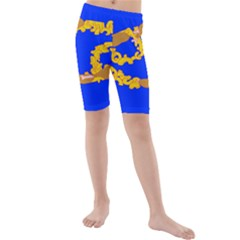 Illustrated 69 Blue Yellow Star Zodiac Kids  Mid Length Swim Shorts