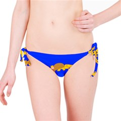 Illustrated 69 Blue Yellow Star Zodiac Bikini Bottom