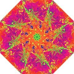 Colors Hook Handle Umbrellas (Medium)