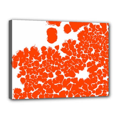 Red Spot Paint White Polka Canvas 16  x 12