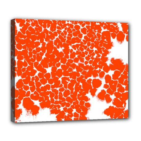 Red Spot Paint White Deluxe Canvas 24  x 20