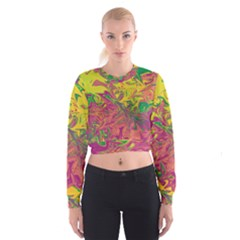 Colors Cropped Sweatshirt