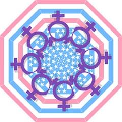 Transgender flag Hook Handle Umbrellas (Medium)