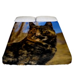 Adult Wild Cat Sitting and Watching Fitted Sheet (California King Size)