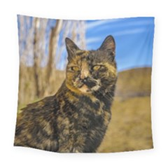 Adult Wild Cat Sitting and Watching Square Tapestry (Large)
