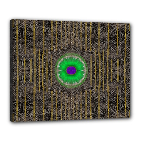 In The Stars And Pearls Is A Flower Canvas 20  x 16
