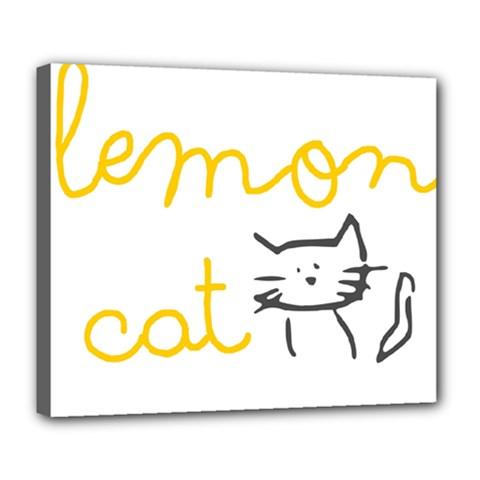 Lemon Animals Cat Orange Deluxe Canvas 24  x 20