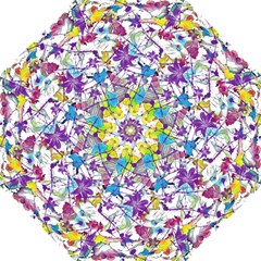 Lilac Lillys Hook Handle Umbrellas (medium)