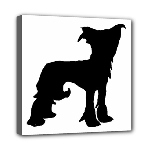 Chinese Crested Silo Black Mini Canvas 8  x 8