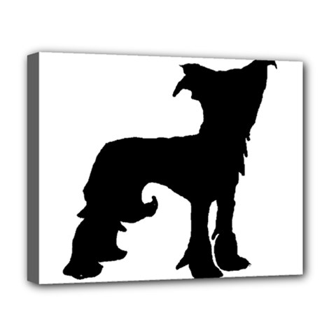 Chinese Crested Silo Black Deluxe Canvas 20  x 16