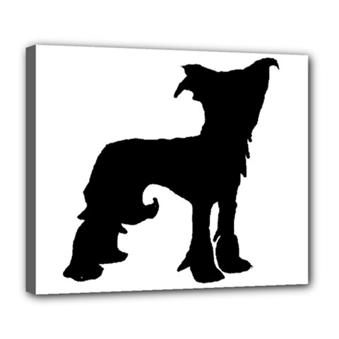 Chinese Crested Silo Black Deluxe Canvas 24  x 20