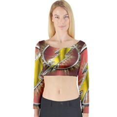 Flash Flashy Logo Long Sleeve Crop Top