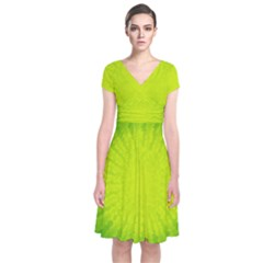 Radial Green Crystals Crystallize Short Sleeve Front Wrap Dress