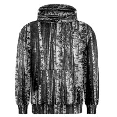 Birch Forest Trees Wood Natural Men s Pullover Hoodie