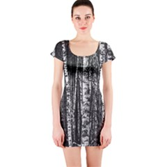 Birch Forest Trees Wood Natural Short Sleeve Bodycon Dress