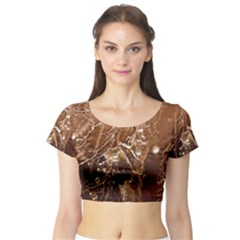 Ice Iced Structure Frozen Frost Short Sleeve Crop Top (Tight Fit)